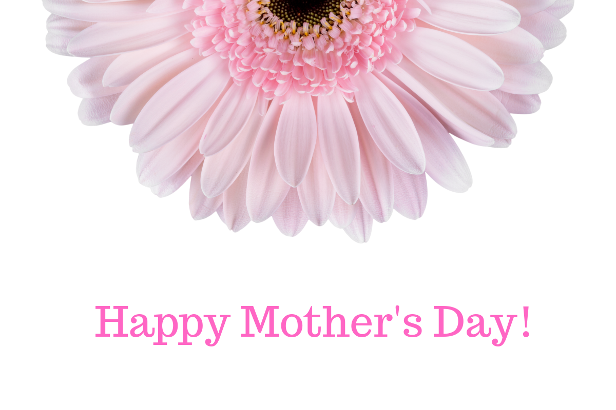 Mother's Day header with flower on white background.